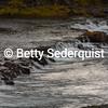 Troll Falls, Western Iceland