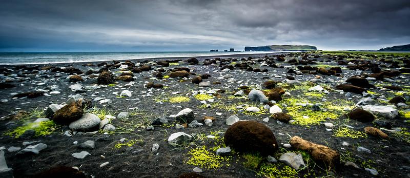 Moody Shoreline - Iceland