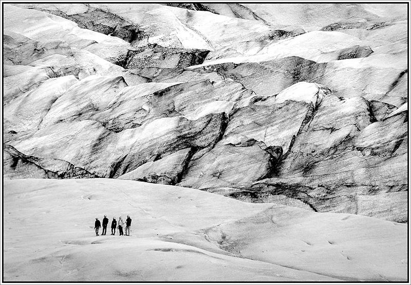 Glacier Walkers