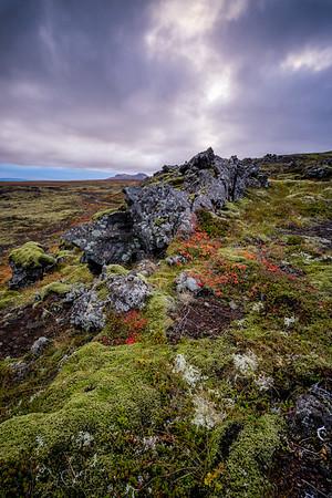 Berserker Lava Field