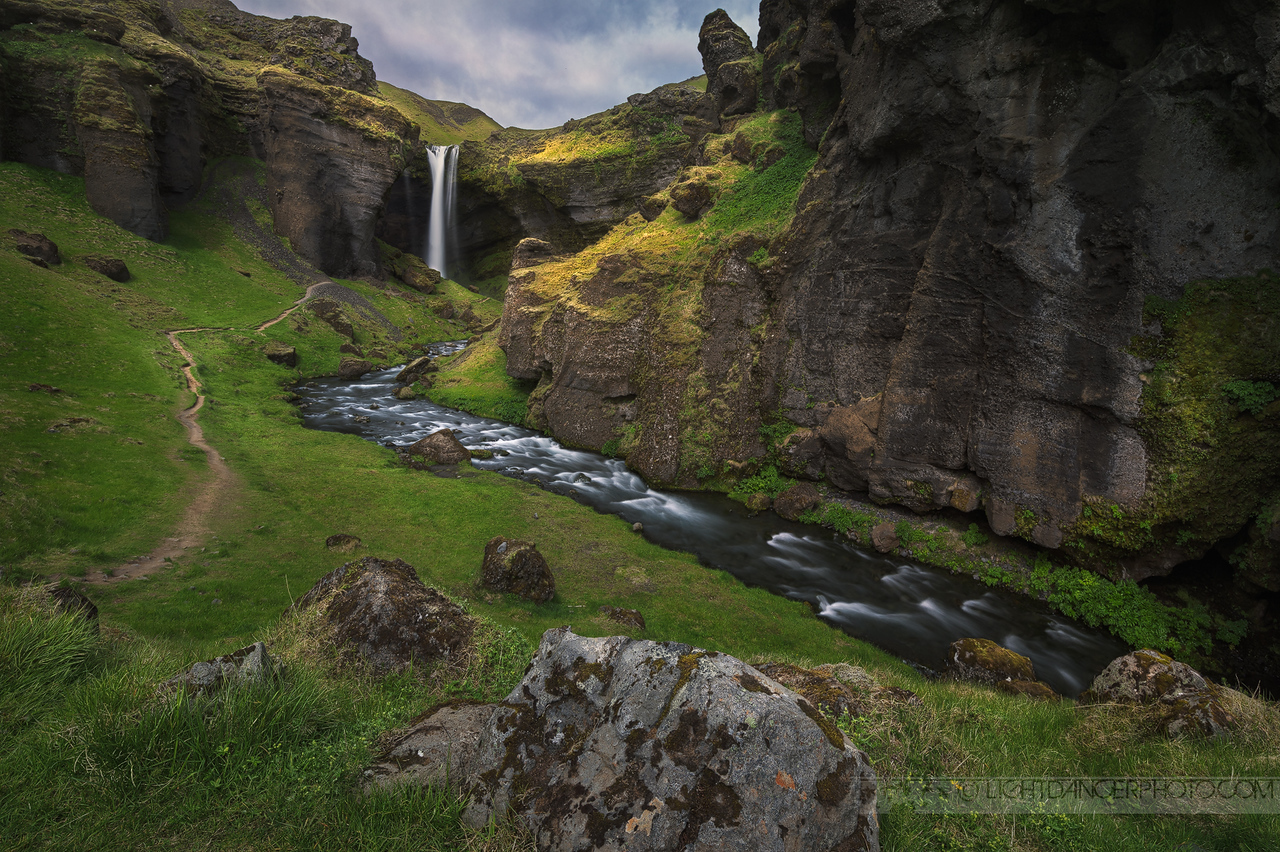 Elves Live Here