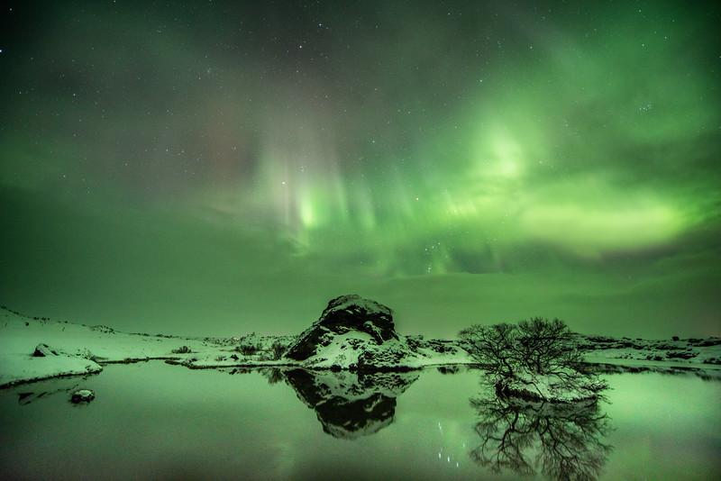 A grren sky night