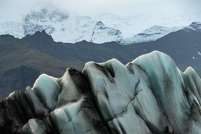 Zebra Ice