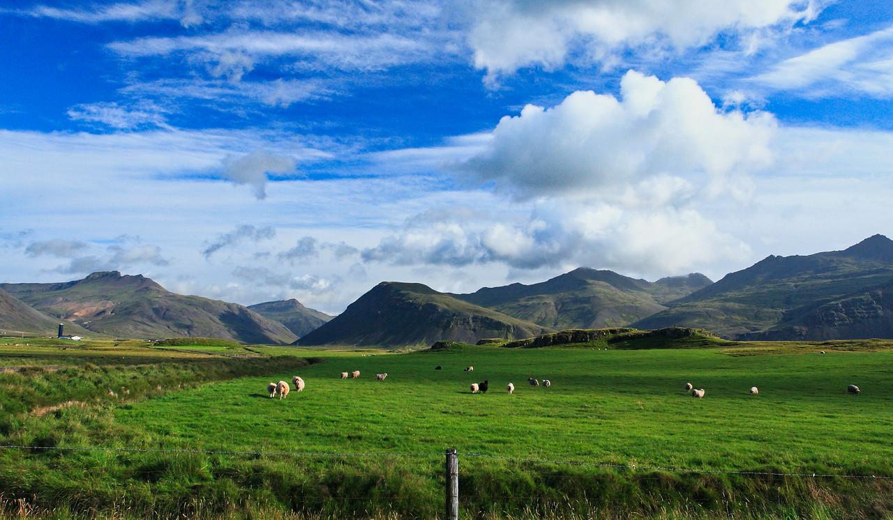 Τυπική εικόνα από την ισλανδική ενδοχώρα με τις τεράστιες εκτάσεις για αγροτική ή κτηνοτροφική εκμετάλλευση.