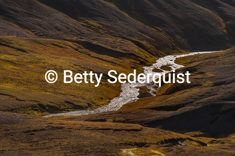 Glacial Stream, northern Iceland