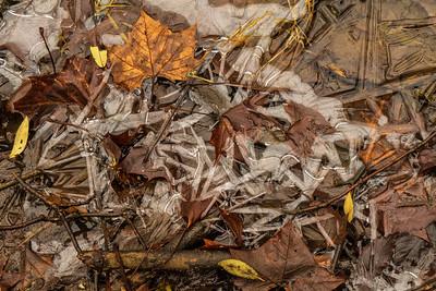 Icescape: Winter's Breath | Glen Helen Natural Monument