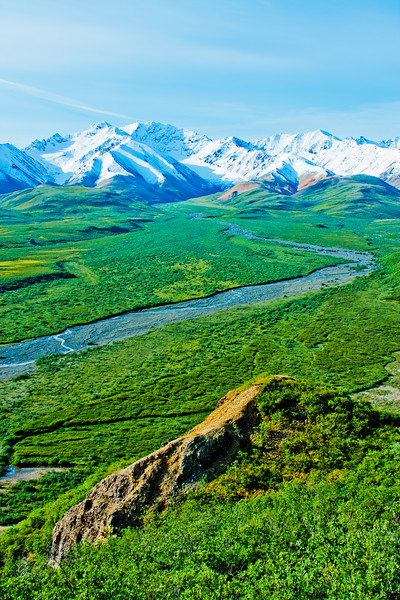 Hike through Denali National Park 12: Journey into Alaska