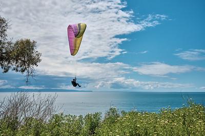 Paragliding over Wilcox - Douglas Family Preserve