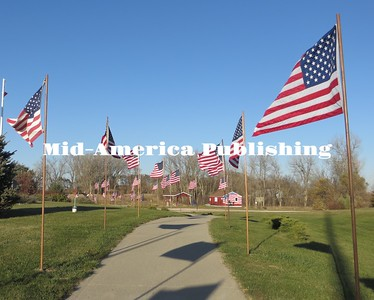 Battle Creek Avenue of Flags (Nov 23, 2016)