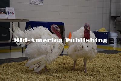 Turkey Pardoning at Ridge View (Nov 2016)
