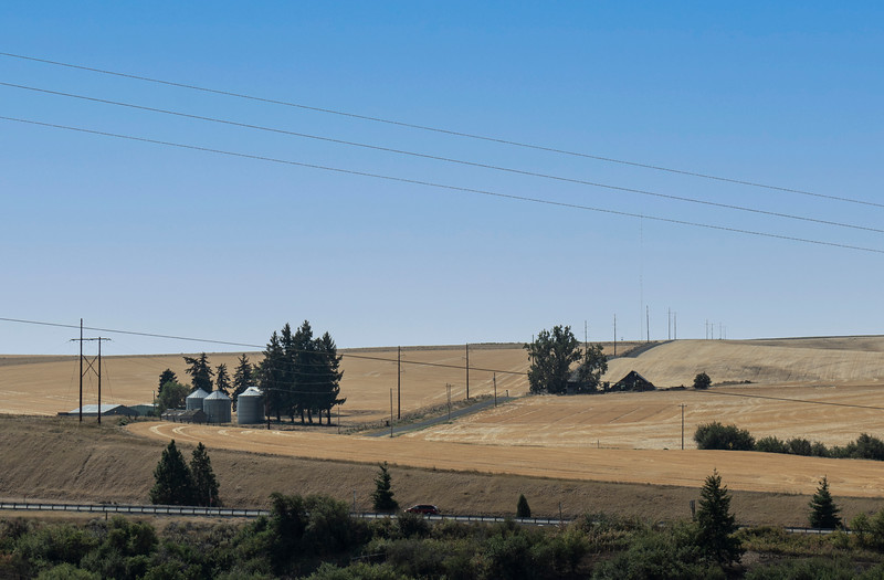 Drought in the Palouse
