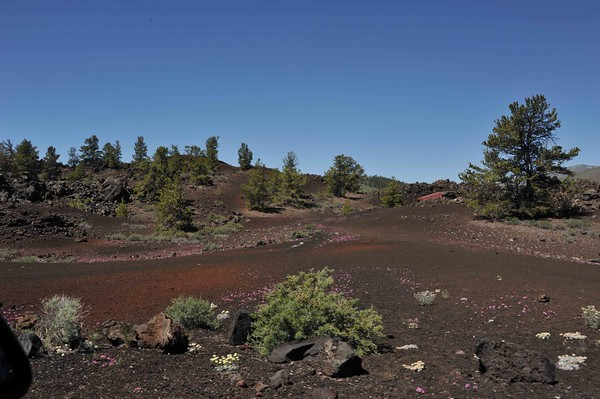 Craters of the Moon - June 2015