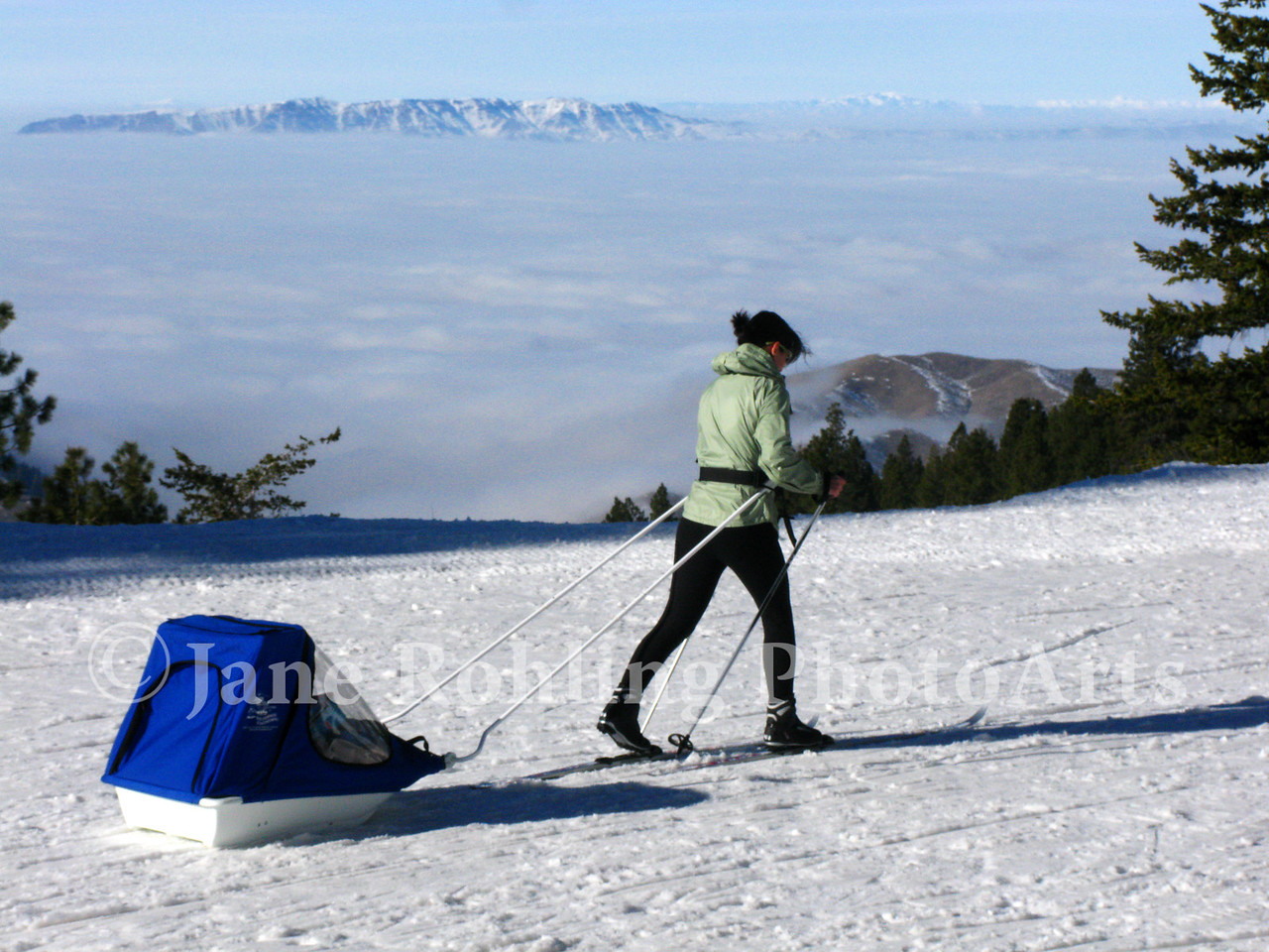 Mom can now take toddlers along when cross country skiing at Bogus Basin Mountain Recreation Area near Boise, Idaho.