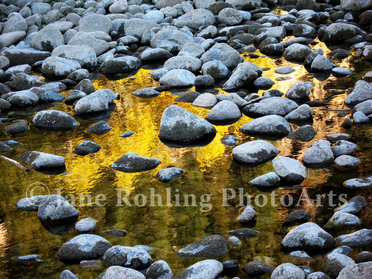 The reflection of fall leaves in the South Fork of the Boise River create a vision of liquid gold.