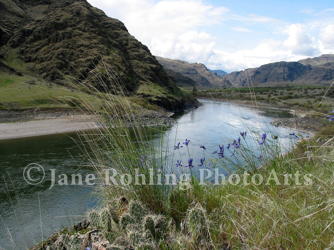 The Snake River winding downriver towards Pittsburg Landing on the Snake River in Hells Canyon National Recreation Area. (Oregon on the left, Idaho on the right)