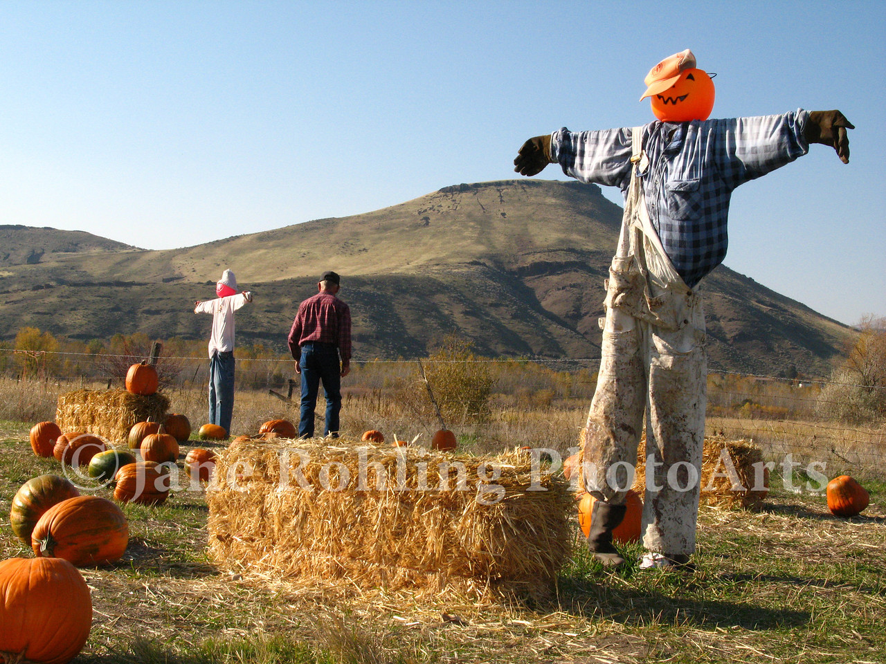 Scarecrows, pumpkins, and straw bales set the stage for a fun Halloween family event, Thunder Mountain Railroad, Horseshoe Bend, Idaho.