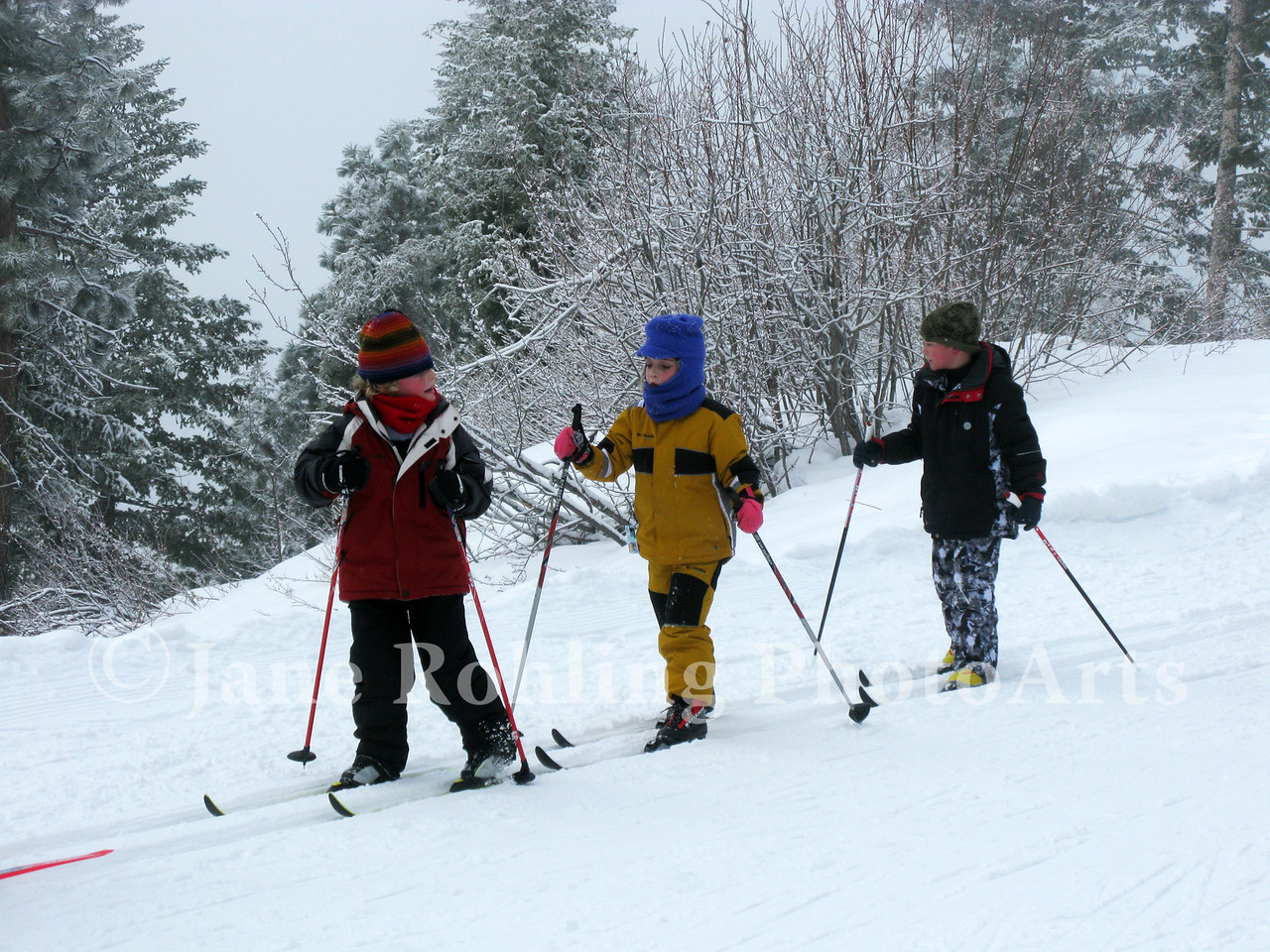 Kids getting their first exposure to cross country skiing during the Snow School program at Bogus Basin Mountain Recreation Area near Boise, Idaho.