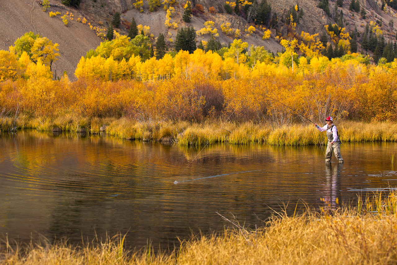 Fishing in the Fall