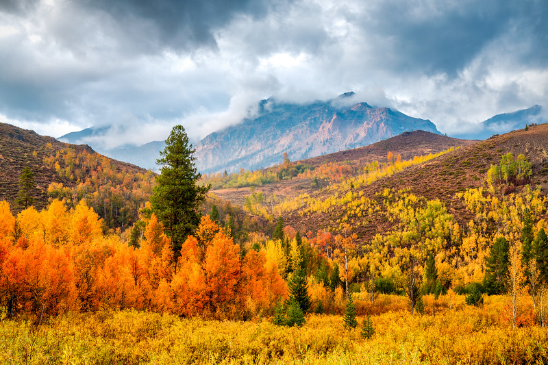 Fall in the Boulder Mountains