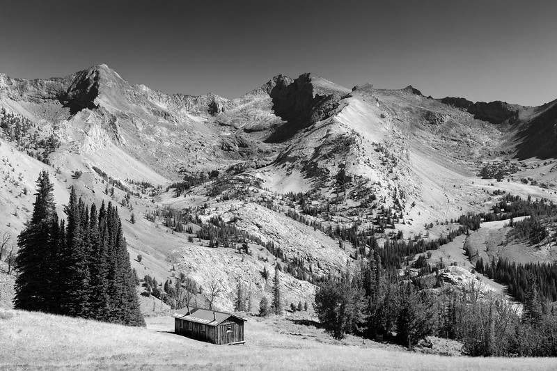 Pioneer Cabin B&W