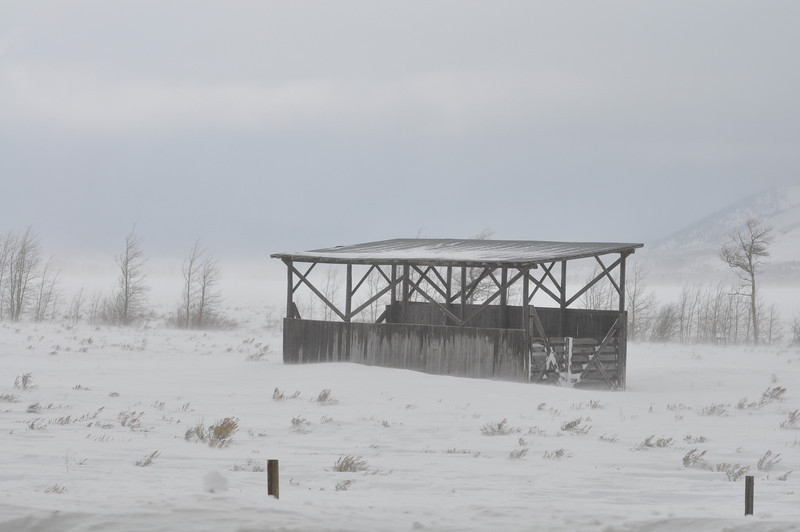 Hay shed in a snowstorm. Island Park, ID. 12.08
