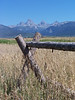 View of Grand Tetons, from the Idaho side. with Jack-fence in the foreground. 8.08<br /> <br /> Mt. Owen (12,928ft), Grand Teton (13,770 ft), Middle Teton (12,804 ft), South Teton (12,514 ft).