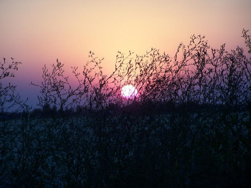 Sunset on 8.27.08, Idaho