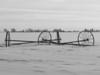 Irrigation Pipe, b & w