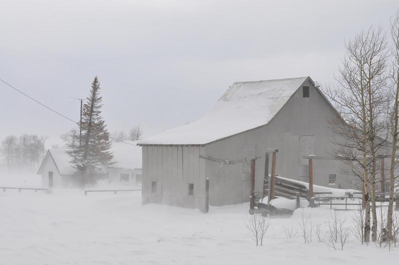 Idaho barn in a snowstorm.  Island Park, ID. 12.08