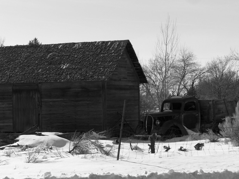 Old truck and outbuilding