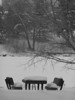Winter picnic table, bw