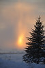 Sun setting thru the snowstorm.  Idaho . 11.10