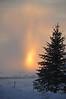 Sun setting thru the snowstorm.  Idaho . 11.10
