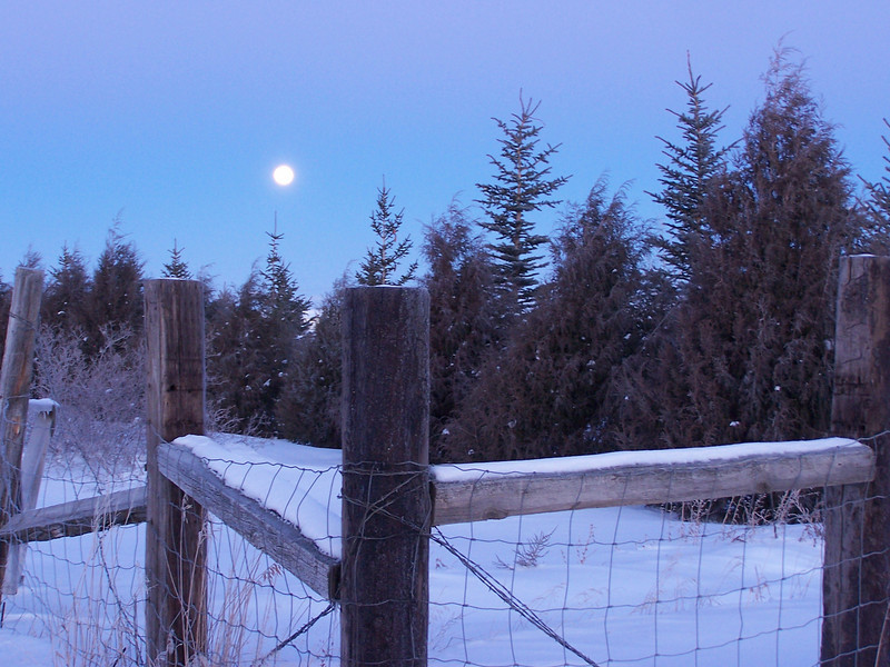 Moon setting on a cold January morning; -20 degrees at the time of this shot.