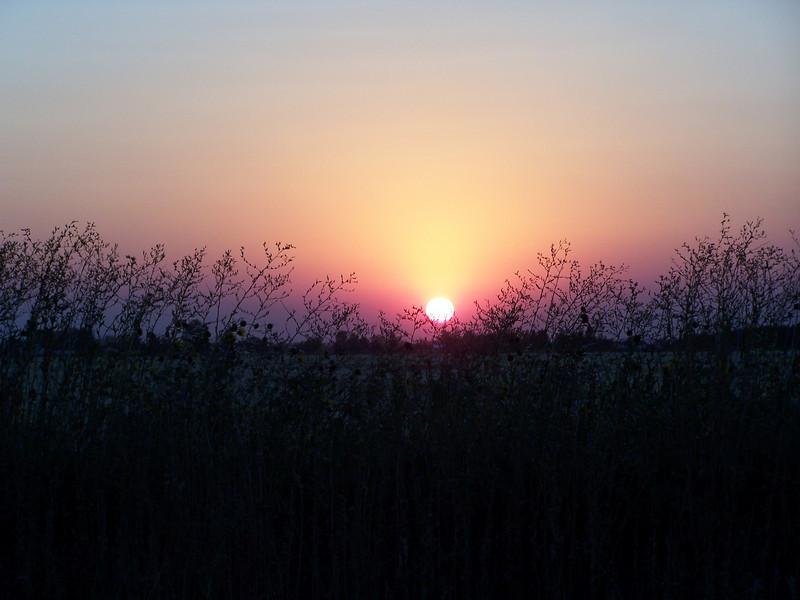 Sunset on 8.27.08, Idaho.