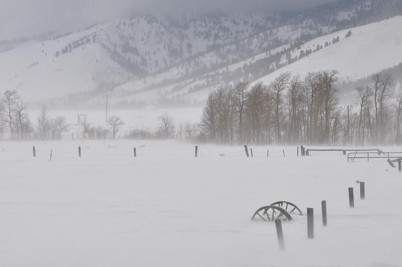 Snowstorm near Island Park, Idaho. 1.09