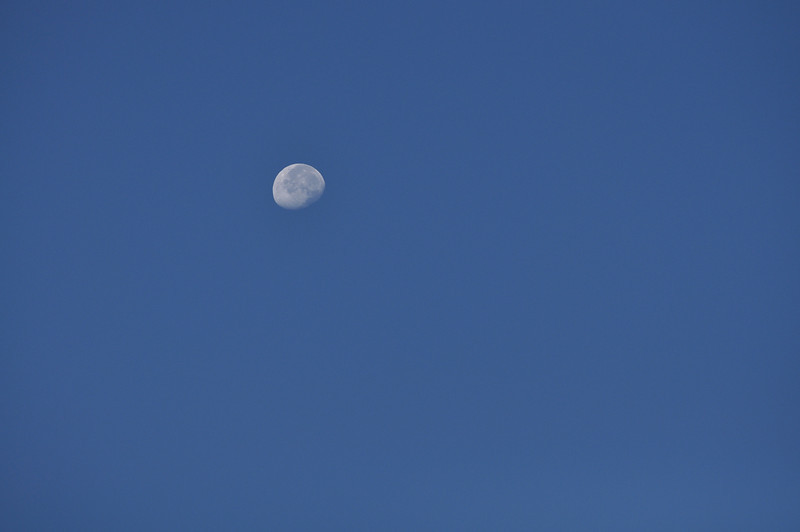 Moon remaining in the morning sky.  Idaho. 10.10