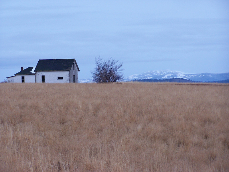 Homestead with a view of the Tetons, near Ashton, Id. 11.08