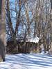 Log Cabin, color