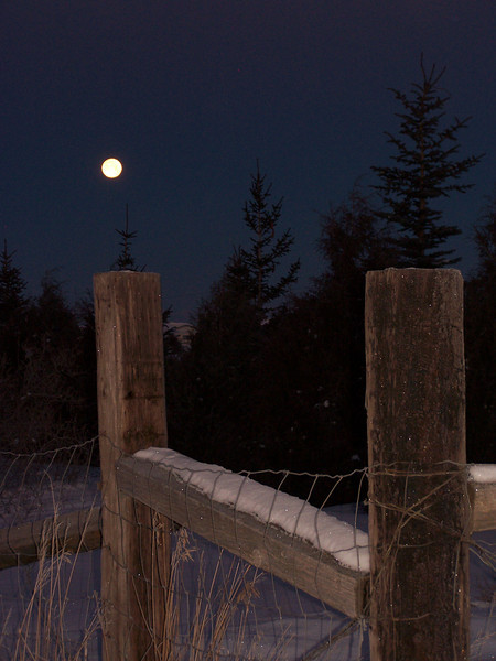 Moon setting on a cold January morning; Brrr...teeth chattering, shivering as it was -20 degrees at the time of this shot.