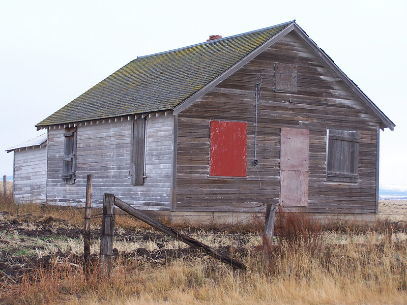 Homestead with red window, near Ashton, Id. 11.08