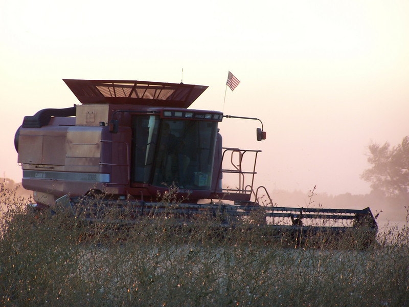 Combine harvesting at sunset. Idaho. 8.08