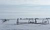 Irrigation Pipe in winter field, 3.10.08
