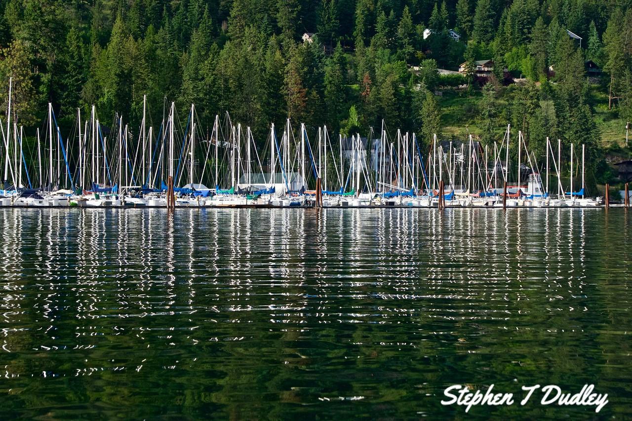 Sailboats Scenic Bay