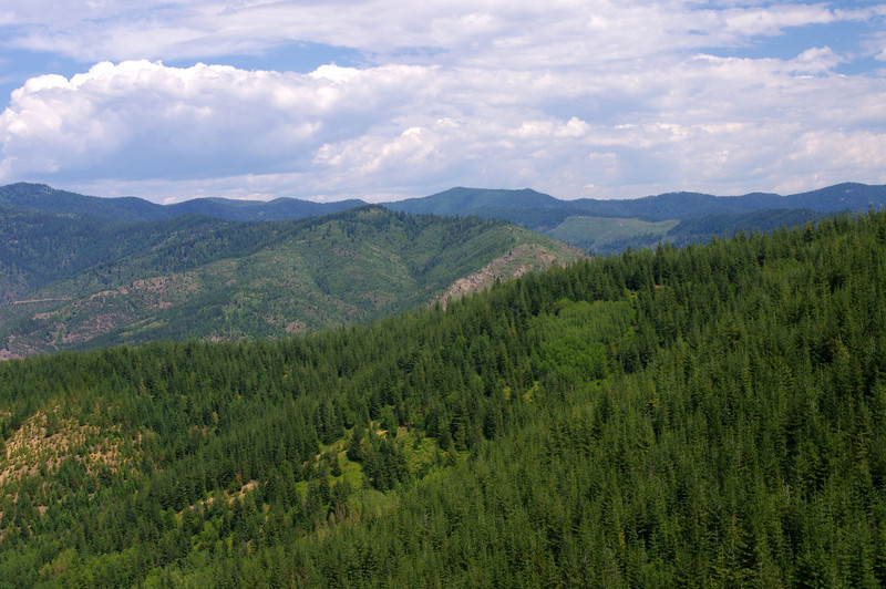 Another expansive vista from the Route of the Hiawatha.