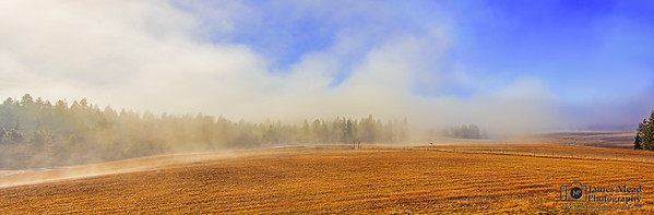 Fog Sunrise on the Farm, Idaho