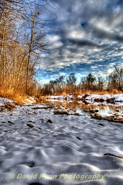 Boise, Winter on the Banks of the Boise River
