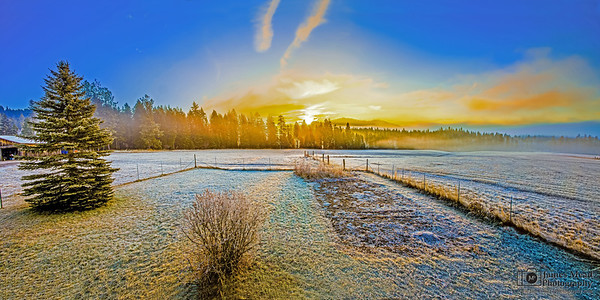 """Morning Light,"" Frost on the farm pastures at Sunrise, Harrison Idaho"