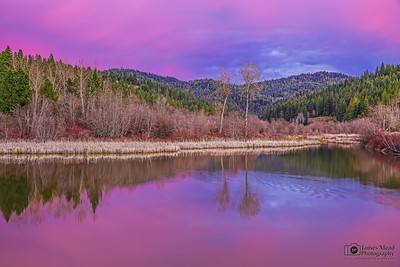 """Infinity,"" Sunset over a Wetlands Pond, Northern Idaho"