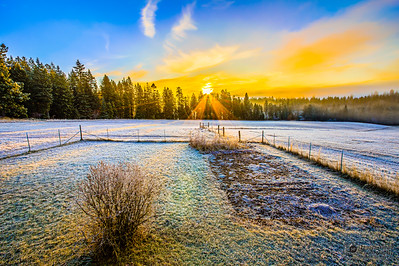"""Morning Rays,"" Winter Sunrise on the Farm, Harrison, Idaho"